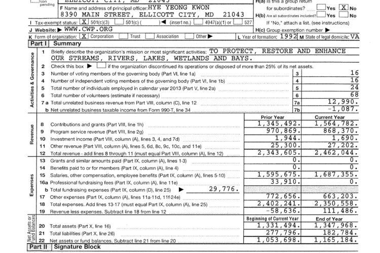 Form 990 2013