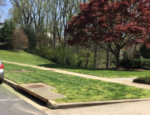 Solutions to Polluted Runoff in Maryland's Overlook and Epping Forest Neighborhoods